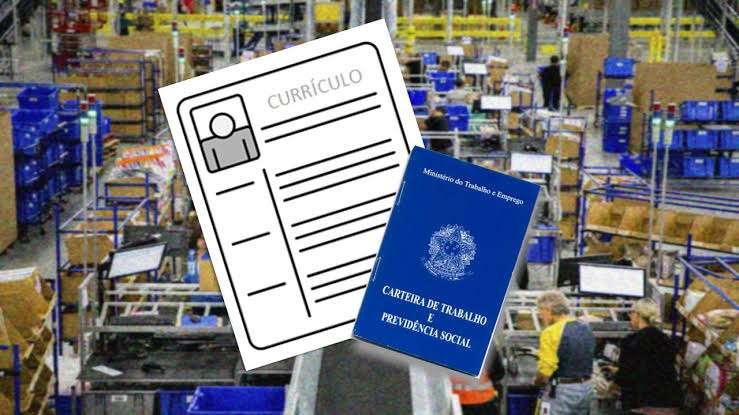 Motorista – Analista – Operador de Caixa – Auxiliar Logístico – Repositor – PCD